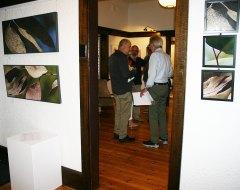 Teresa-Gallery-1