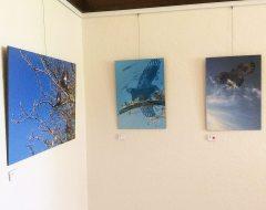 Miriam-Prints-1